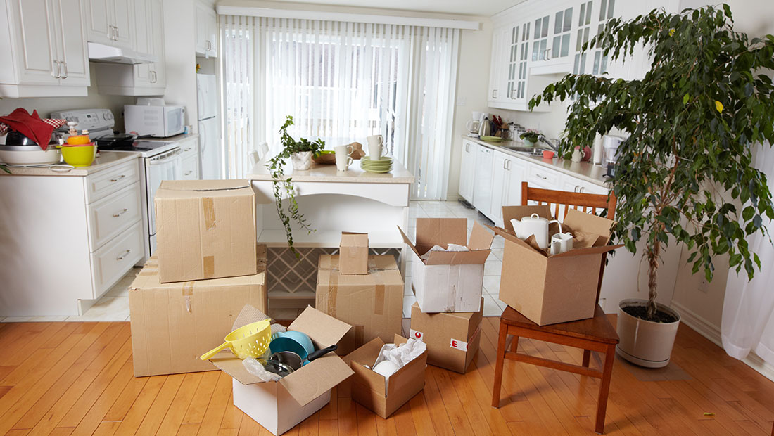 What you need to own for your first apartment