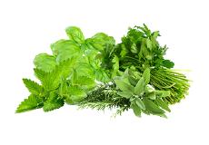 Cuisiner avec des herbes fraîches