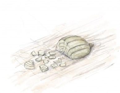 Comment couper un oignon sans pleurer