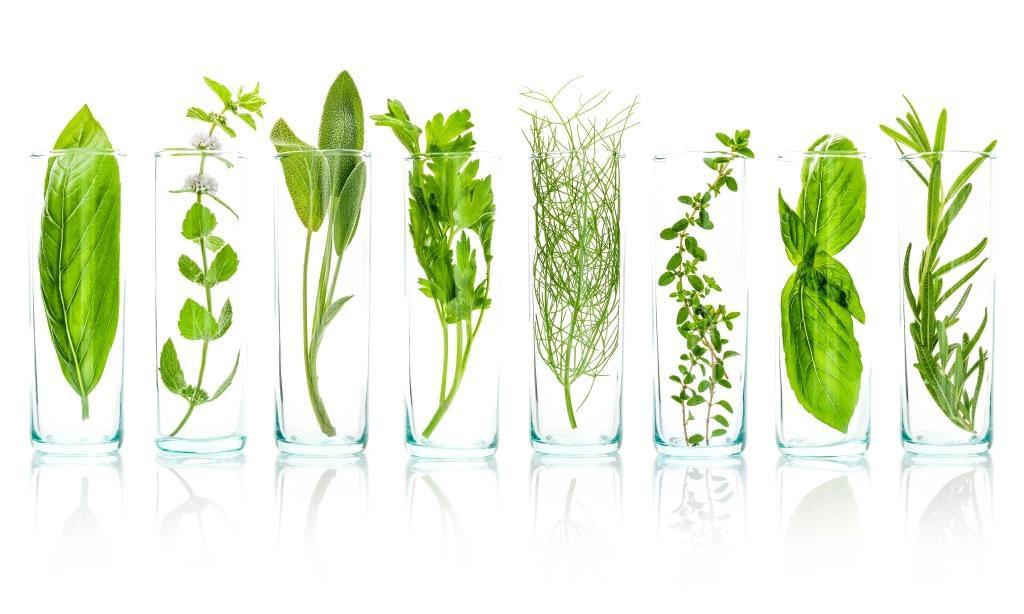 """Résultat de recherche d'images pour """"Utilisez des herbes."""""""