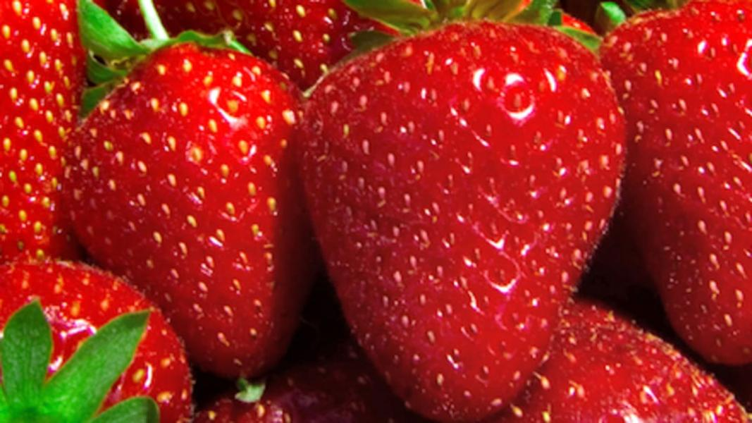 Beurre aux pommes et aux fraises